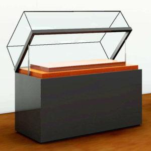vitrina de isla rectangular