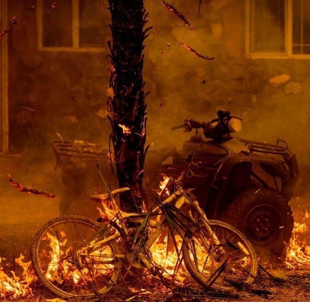 Incendios forestales 1