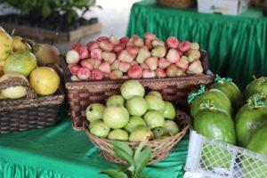 Frutas varias