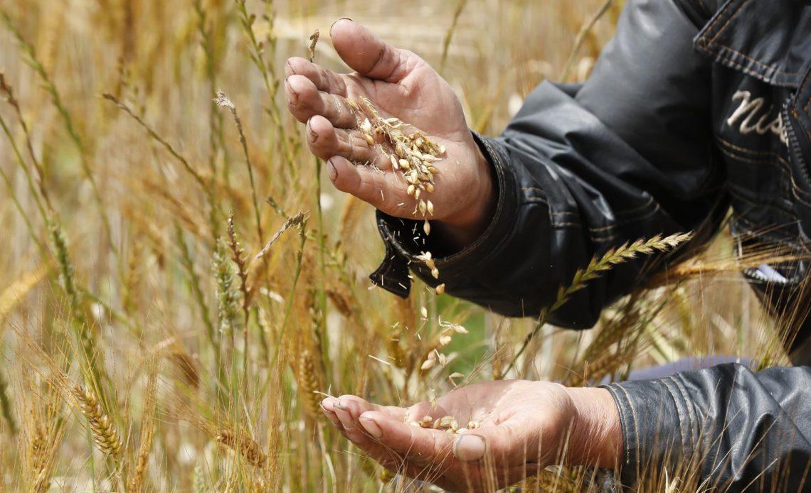 América destaca su posición unida sobre el futuro de la producción de alimentos