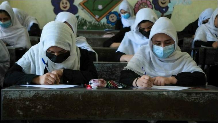 Régimen talibán permitirá a las mujeres estudiar en universidades completamente separadas de los hombres